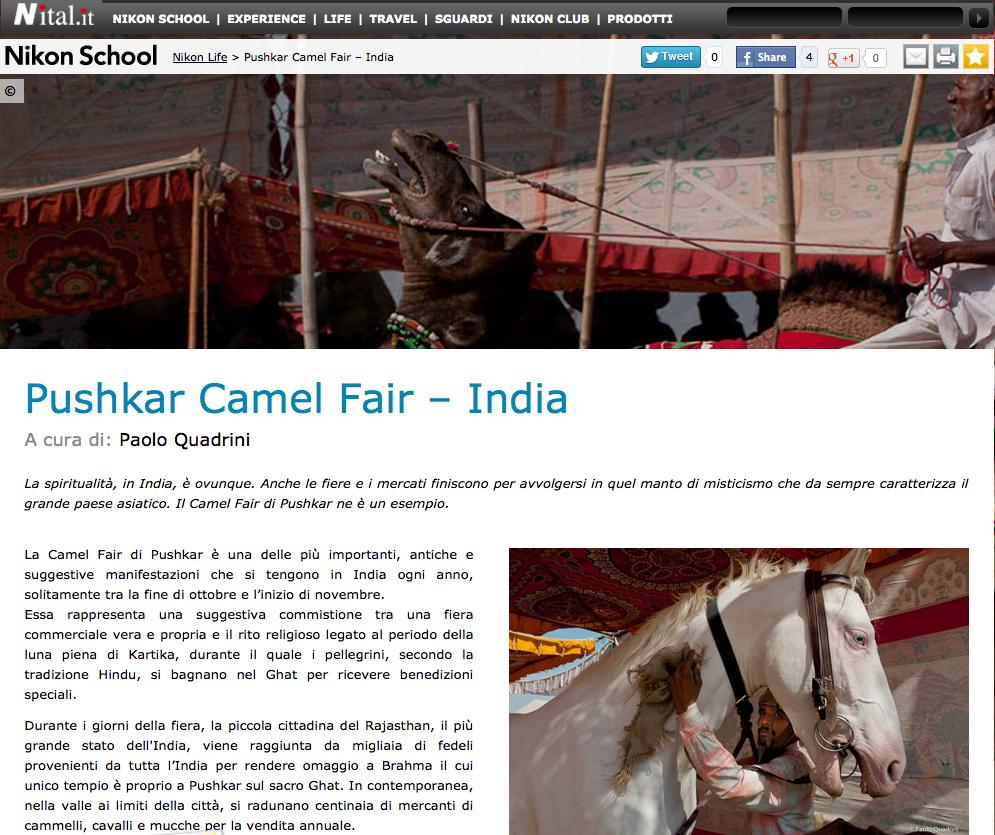 Nikon School - Nikon Life - Pushkar Camel Fair – India